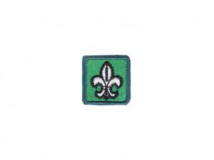 Distintivo Secção Explorador