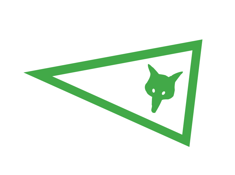 Bandeiras e bandeirolas