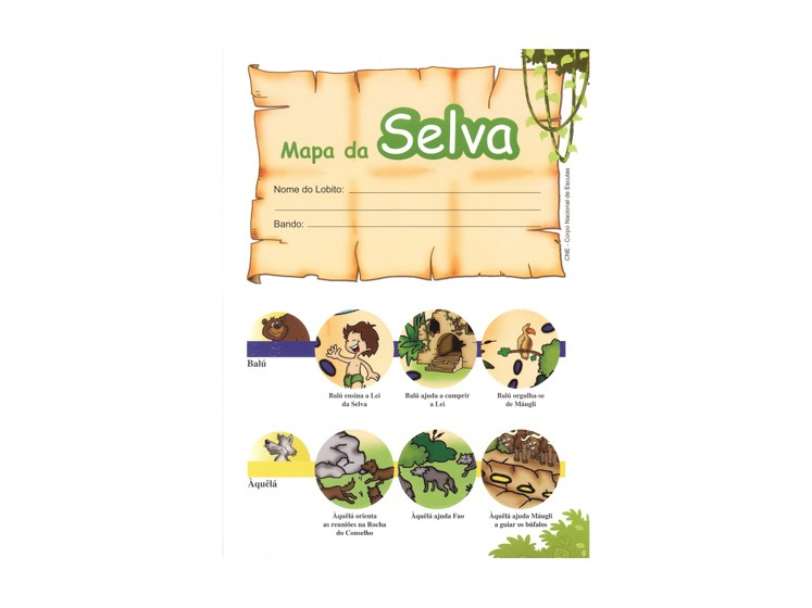 Cartaz Mapa da Selva
