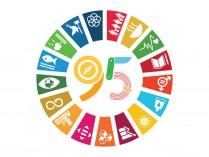 Insígnia ODS